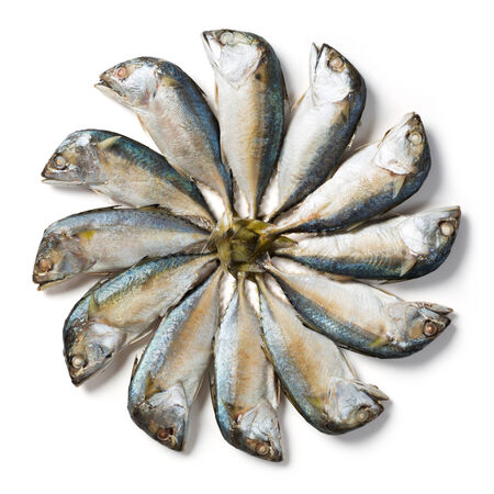 Close up group of steamed Thai mackerel isolated on white  photo