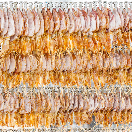 Close up dried squid hanging in row waiting for customer photo