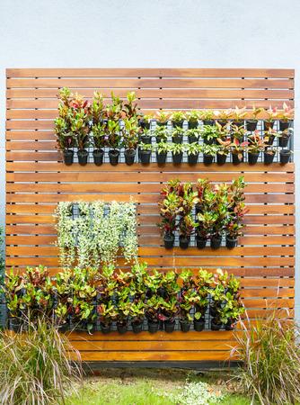 Beautiful vertical garden in city around office building photo