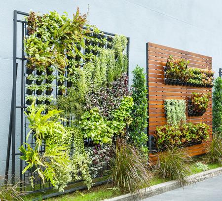 Beautiful vertical garden in city around office building 스톡 콘텐츠