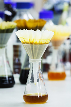 blended: Filter food samples after blended or crushed with fluted filter paper and funnel on flask Stock Photo