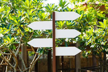 Close up blank directional sign boards in park