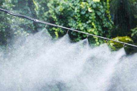 霧ノズル散水する加湿器と暑さを抑える冷却気候や灌漑システム