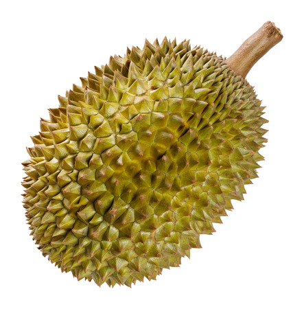 Durian fruit from Thailand isolated on white