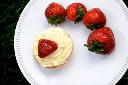 Strawberry and Vanilla Cream Cupcakes with fresh strawberries on top on a white plate on dark green grass photo