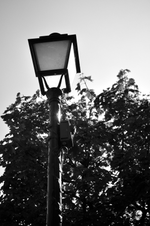 lampost: Black and White Lampost Lantern in Paris France