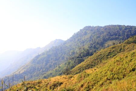 Green hills photo