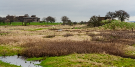 Scene across parkland to Coalhouse fort  Stock Photo - 17211901