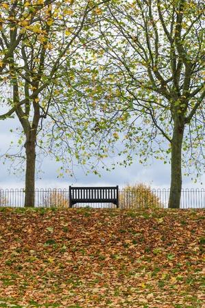 autumnal park bench scene Stock Photo - 17290177