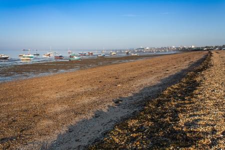 Shoreline Southend on sea Essex UK Stock Photo - 17955566