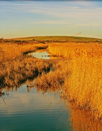 landfill site: discarica di rainham Essex