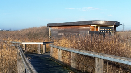 bird hide on marshland Stock Photo