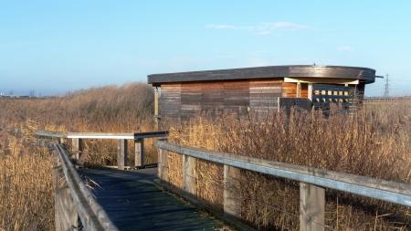 bird hide on marshland Stock Photo