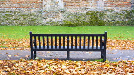 lonely bench photo