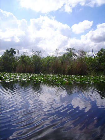 Breathtaking view of the sky reflecting in the water of the Florida everglades. photo