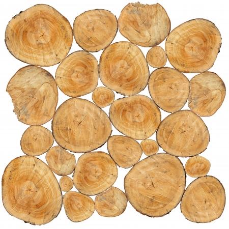 Molti tronchi accatastati in un mucchio isolato su sfondo bianco