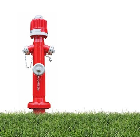 servicios publicos: Boca de incendio roja en la hierba, aislado en fondo blanco Foto de archivo