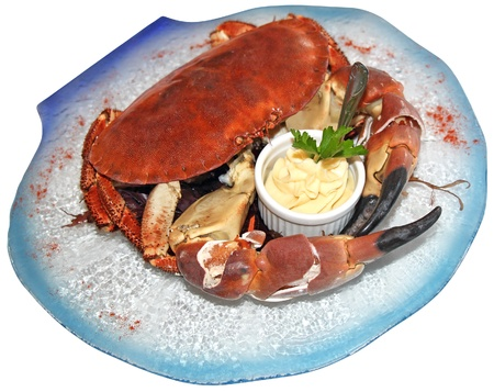 Cooked crabs with sauce on blue plate photo