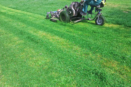mowing grass: Worker on a motor mower cutting grass in city park