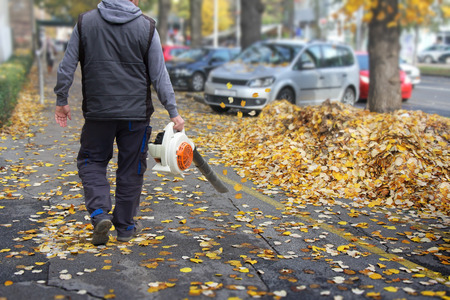 collects: Worker on a street in autumn collects leaves with a leaf blower