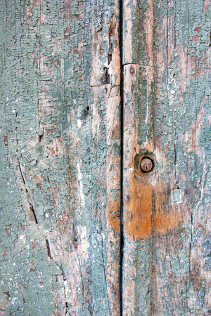 Old wooden door with cracked and damaged green colour photo