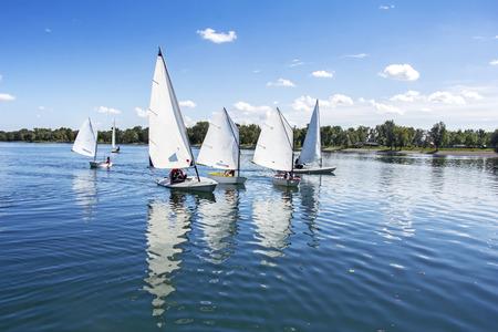 bateau voile: Beaucoup de petits bateaux blancs qui naviguent sur le lac Banque d'images