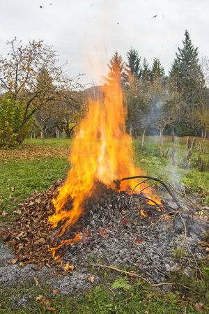 garden waste: Smoke and fire from during Burning of garden waste