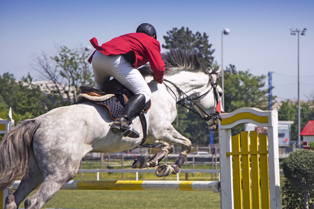 personas saltando: El jinete que salta a caballo que compite en el torneo ecuestre