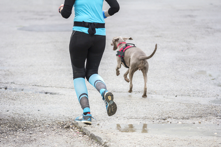 hacer footing: Young woman running with dog in the city street