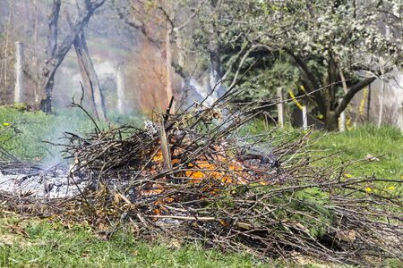 garden waste: Fire and Smoke from during Burning of garden waste Stock Photo