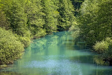 river scape: Landscape with Beautiful nature and green river