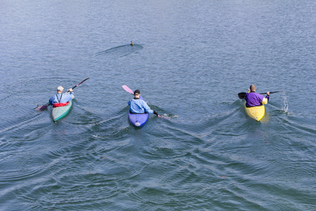recreate: Three rowers with canoe recreate in a lake