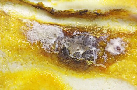 Detail of Spoiled Moldy cheese close up