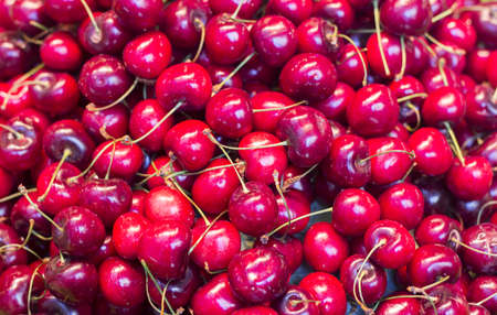 Pile of ripe red fresh cherries as background