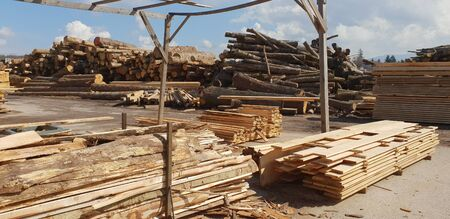 Pile of logs in a sawmill for further processing