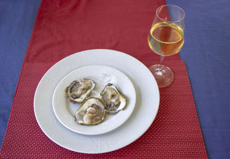 Oysters in ice on a white plate and glass of white wine