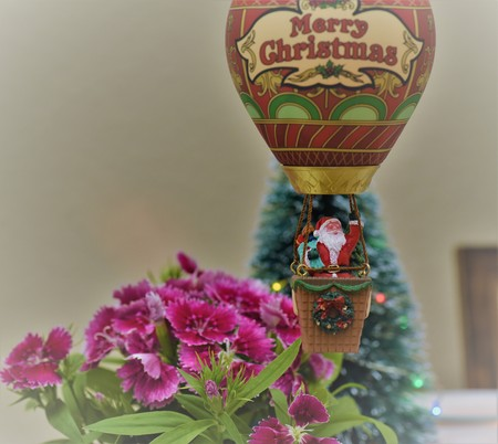 Santa Claus is arriving to town in a hot air balloon wishing merrry christmas flying over flowers and pine trees Banque d'images - 114126290