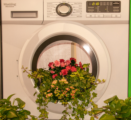 Bunch of flowers coming out of a washing machine Banque d'images - 120853329
