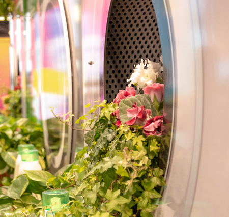 Bunch of flowers coming out of a washing machine Banque d'images - 120853332
