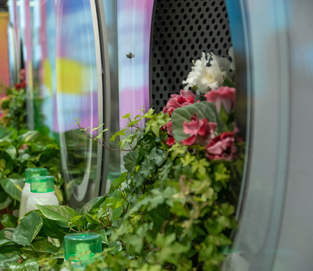 Bunch of flowers coming out of a washing machine Banque d'images - 120853333