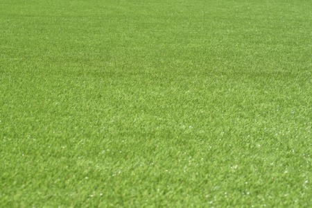 Field of green grass Banque d'images - 120853404