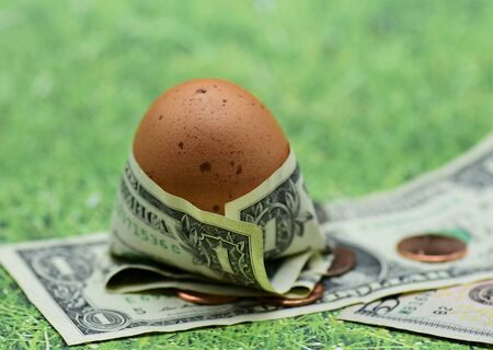 Brown egg wrapped in one dollar bill depicting rising food costs Stock Photo