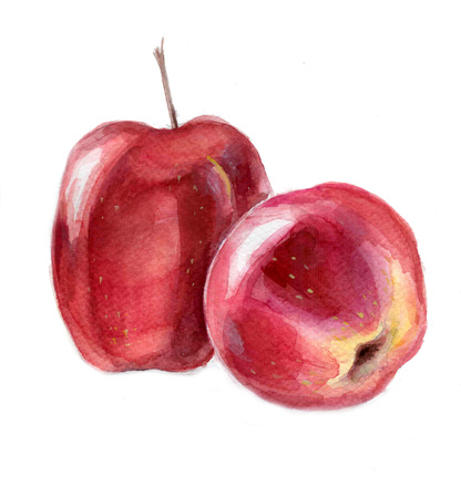 juicy: juicy apple, watercolor illustration, Stock Photo