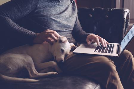 El hombre con su perro y su computadora portátil trabaja en casa Foto de archivo