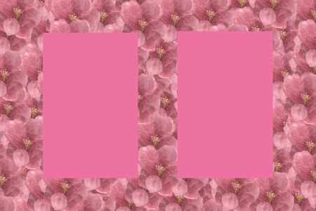 Floral Pattern Frame with Hydrangea in isolated pink background - Flowers Decorative.