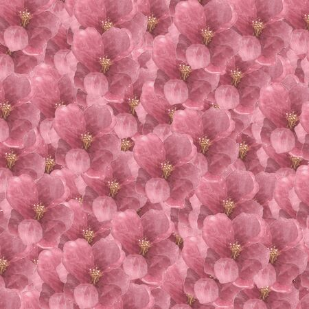 Square Floral Pattern with Hydrangea - Flowers Decorative. Stockfoto