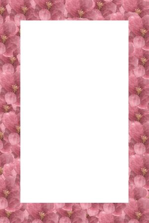 Floral Pattern Frame with Hydrangea - Flowers Decorative.
