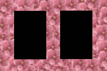 Floral Pattern Frame with Hydrangea in isolated black background - Flowers Decorative. Zdjęcie Seryjne - 132082460