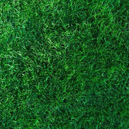 level playing field: Beautiful deep green grass background texture