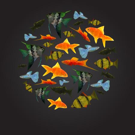 guppy fish: Colorful Aquarium Fishes isolated polygonal vector illustration